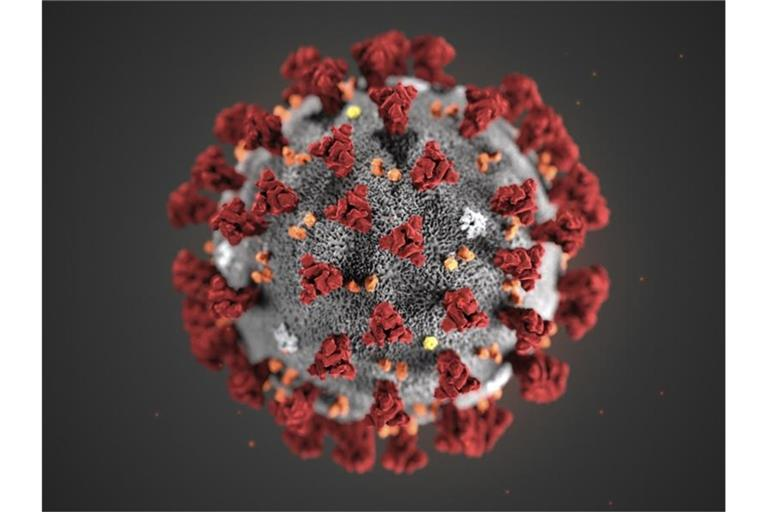 Eine 3D-Darstellung eines Coronavirus. Foto: Uncredited/Centers for Disease Control and Prevention/AP/dpa/Archivbild